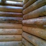 Как избавиться от плесени на дереве домашними средствами